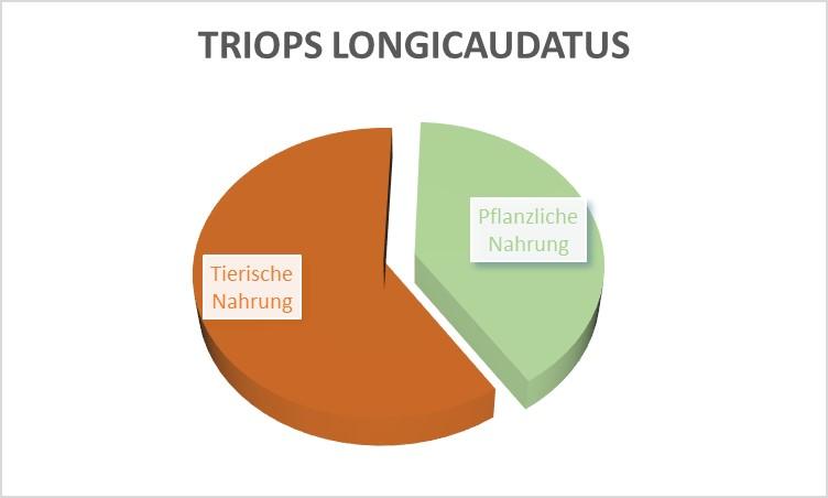 Welches futter für Triops longicaudatus?